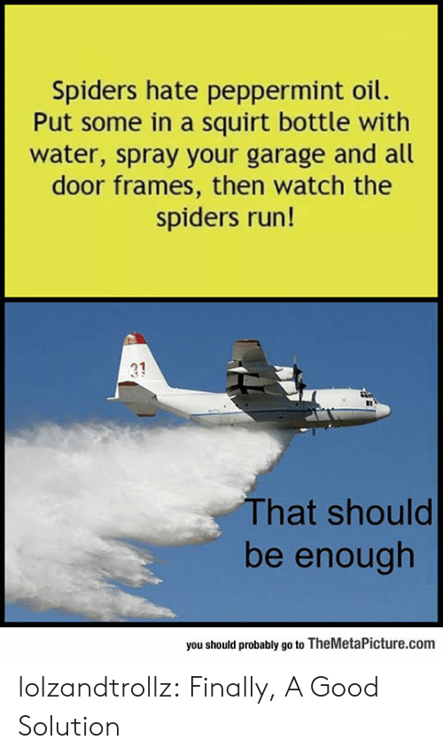 squirt: Spiders hate peppermint oil.  Put some in a squirt bottle with  water, spray your garage and all  door frames, then watch the  spiders run!  31  That should  be enough  you should probably go to TheMetaPicture.com lolzandtrollz:  Finally, A Good Solution