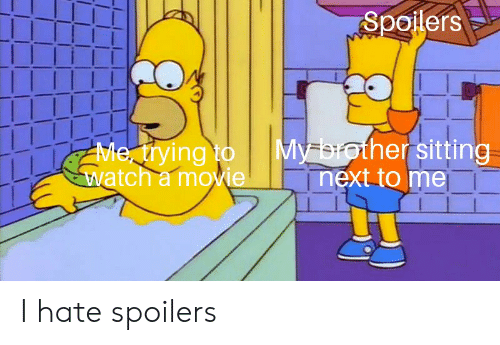 Reddit, Movie, and Watch: Spoilers  My brother sitting  next to me  Me ying to  watch a movie I hate spoilers