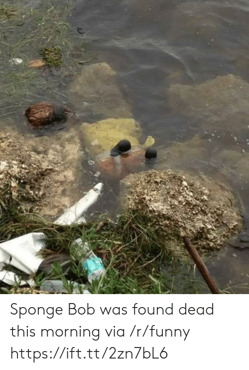 Funny, Sponge, and Sponge Bob: Sponge Bob was found dead this morning via /r/funny https://ift.tt/2zn7bL6