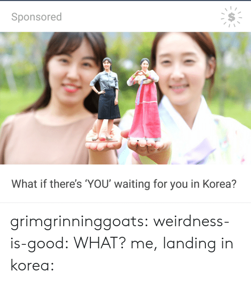Sponsored: Sponsored  What if there's YOU waiting for you in Korea? grimgrinninggoats:  weirdness-is-good: WHAT? me, landing in korea: