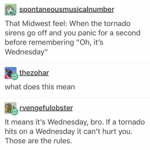 "Mean, Tornado, and Wednesday: spontaneousmusicalnumber  That Midwest feel: When the tornado  sirens go off and you panic for a second  before remembering ""Oh, it's  Wednesday""  thezohar  what does this mean  rvengefulobster  It means it's Wednesday, bro. If a tornado  hits on a Wednesday it can't hurt you  Those are the rules."
