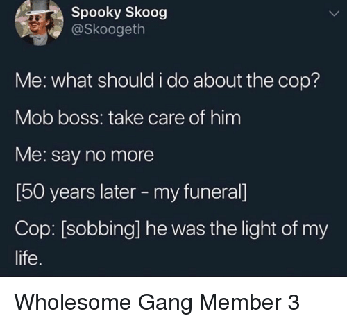 Life, Gang, and Say No More: Spooky Skoog  @Skoogeth  Me: what should i do about the cop?  Mob boss: take care of him  Me: say no more  [50 years later - my funeral]  Cop: [sobbing] he was the light of my  life. Wholesome Gang Member 3