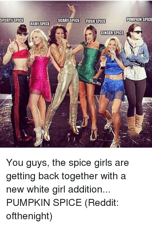 posh spice: SPORTY SPICE  BABY SPICE  SCARY SPICE POSH SPICE  PUMPKIN SPICE  GINGER SPICE You guys, the spice girls are getting back together with a new white girl addition... PUMPKIN SPICE (Reddit: ofthenight)