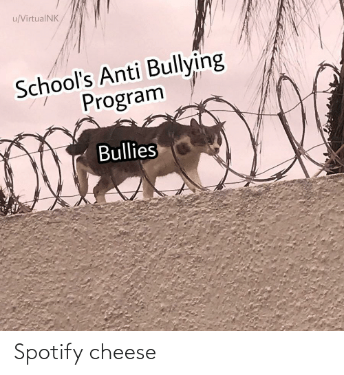 Spotify: Spotify cheese