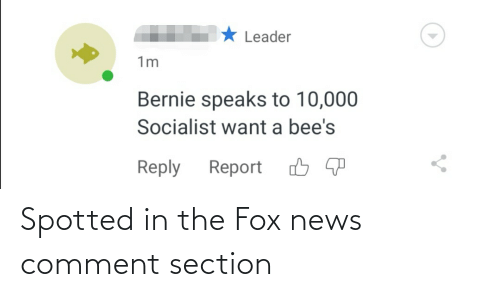 The Fox: Spotted in the Fox news comment section