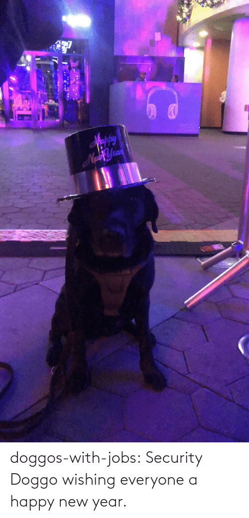 security: Sppy  NaYean doggos-with-jobs:  Security Doggo wishing everyone a happy new year.