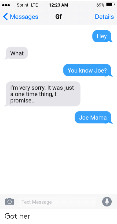 Sorry, Sprint, and Text: Sprint LTE  12:23 AM  69%  Messages  Gf  Details  Hey  What  You know Joe?  I'm very sorry. It was just  a one time thing, I  promise..  Joe Mama  Text Message Got her