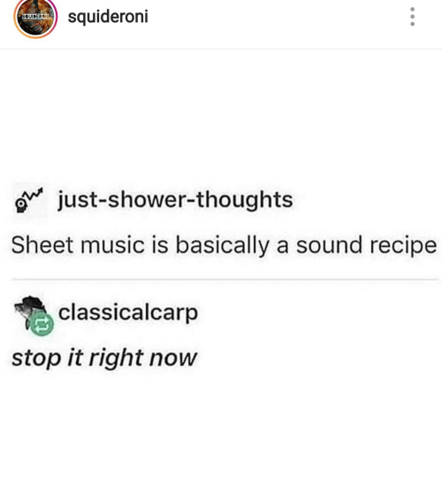 Music, Shower, and Shower Thoughts: squideroni  SQUIDERONI  just-shower-thoughts  Sheet music is basically a sound recipe  classicalcarp  stop it right now