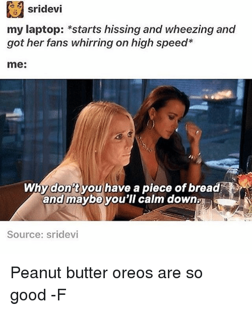 wheeze: sridevi  my laptop: *starts hissing and wheezing and  got her fans whirring on high speed  me:  Why don't you have a piece of bread  and maybe you'll calm down  Source: Sridevi Peanut butter oreos are so good -F