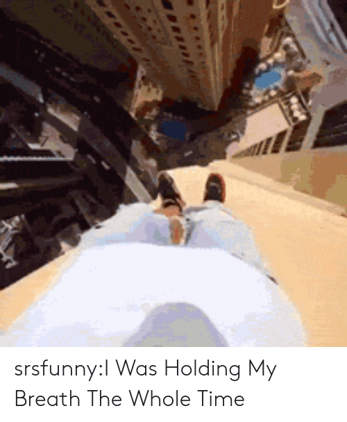 holding my breath: srsfunny:I Was Holding My Breath The Whole Time