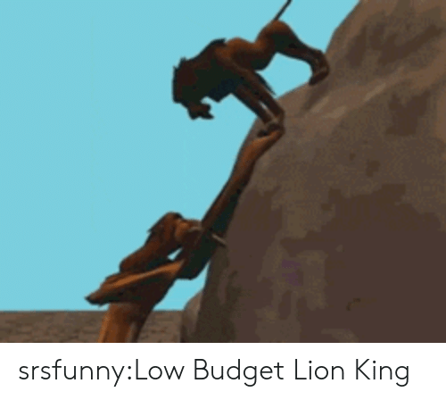 Low Budget: srsfunny:Low Budget Lion King