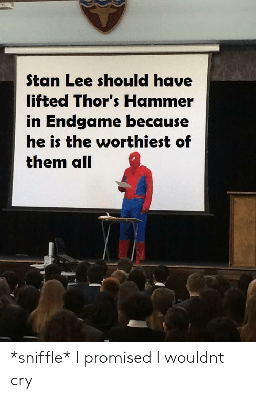 Stan, Stan Lee, and Cry: Stan Lee should have  lifted Thor's Hammer  in Endgame because  he is the worthiest of  them all *sniffle* I promised I wouldnt cry
