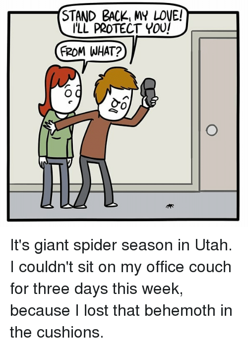 behemoth: STAND BACK, MY LOVE!  ILL PROTECT YOU  (ROMI WHAT?  0 It's giant spider season in Utah. I couldn't sit on my office couch for three days this week, because I lost that behemoth in the cushions.