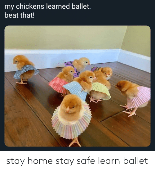 Home: stay home stay safe learn ballet