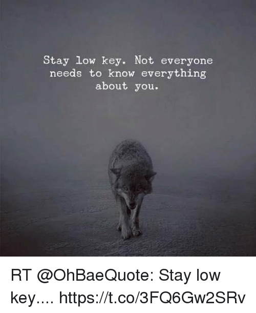 Low Key, Memes, and 🤖: Stay low key. Not everyone  needs to know everything  about you. RT @OhBaeQuote: Stay low key.... https://t.co/3FQ6Gw2SRv