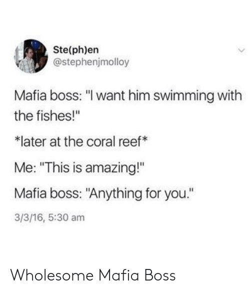 """Bosses: Ste(ph)en  @stephenjmolloy  Mafia boss: """"I want him swimming with  the fishes!""""  later at the coral reef  Me: """"This is amazing!""""  Mafia boss: """"Anything for you.""""  3/3/16, 5:30 am Wholesome Mafia Boss"""