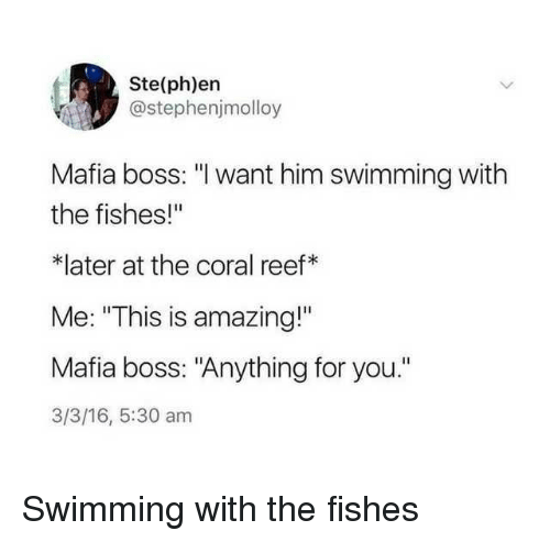 """Amazing, 16.5, and Swimming: Ste(ph)ern  @stephenjmolloy  Mafia boss: """"l want him swimming with  the fishes!""""  *later at the coral reef*  Me: """"This is amazing!""""  Mafia boss: """"Anything for you.""""  3/3/16, 5:30 am Swimming with the fishes"""