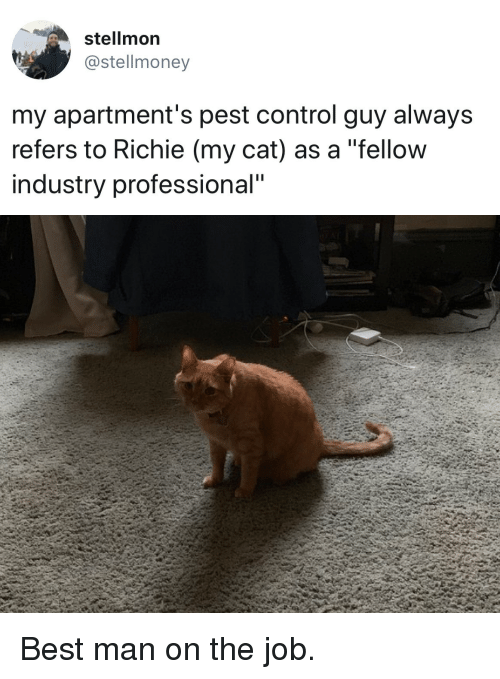 """Control, Best, and Cat: stellmon  @stellmoney  my apartment's pest control guy always  refers to Richie (my cat) as a """"fellow  industry professional"""" Best man on the job."""
