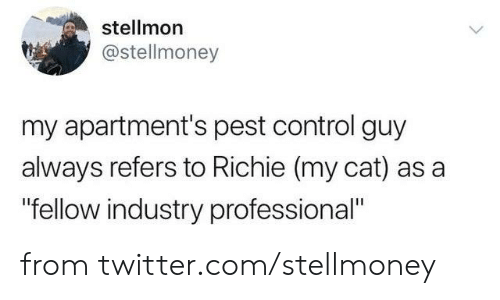 "Apartments: stellmon  @stellmoney  my apartment's pest control guy  always refers to Richie (my cat) as a  ""fellow industry professional"" from twitter.com/stellmoney"