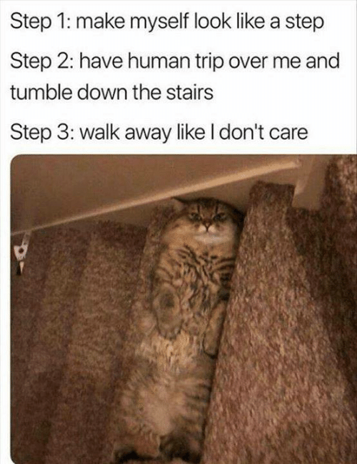 Memes, 🤖, and Human: Step 1: make myself look like a step  Step 2: have human trip over me and  tumble down the stairs  Step 3: walk away like l don't care