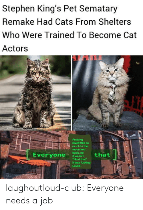 """Cats, Club, and Fucking: Stephen King's Pet Sematary  Remake Had Cats From Shelters  Who Were Trained To Become Cat  Actors  Fucking  loved this so  much to the  moon and  back, no  that  Everyone  it wasn't  """"liked that  it was fucking  Loved laughoutloud-club:  Everyone needs a job"""
