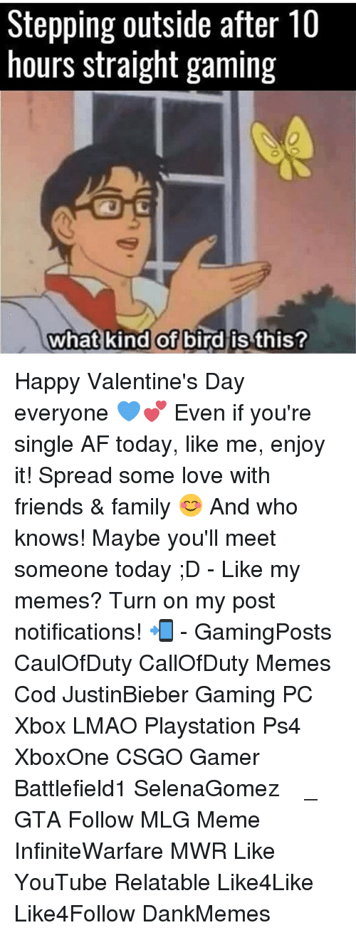 happy valentine day: Stepping outside after 10  hours straight gaming  what kind of  bird is this? Happy Valentine's Day everyone 💙💕 Even if you're single AF today, like me, enjoy it! Spread some love with friends & family 😊 And who knows! Maybe you'll meet someone today ;D - Like my memes? Turn on my post notifications! 📲 - GamingPosts CaulOfDuty CallOfDuty Memes Cod JustinBieber Gaming PC Xbox LMAO Playstation Ps4 XboxOne CSGO Gamer Battlefield1 SelenaGomez بوس_ستيشن GTA Follow MLG Meme InfiniteWarfare MWR Like YouTube Relatable Like4Like Like4Follow DankMemes