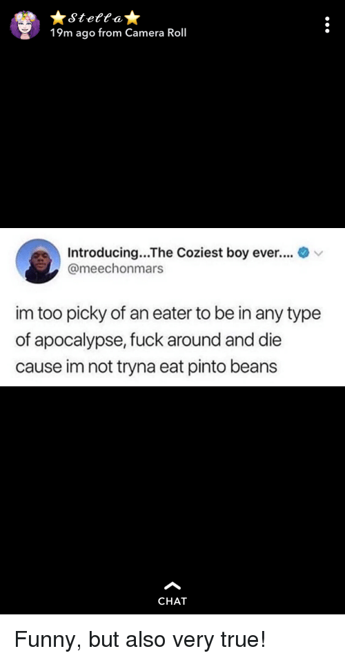 Funny, True, and Camera: Stettat  19m ago from Camera Roll  Introducing...The Coziest boy ever.... v  @meechonmars  im too picky of an eater to be in any type  of apocalypse, fuck around and die  cause im not tryna eat pinto beans  CHAT Funny, but also very true!