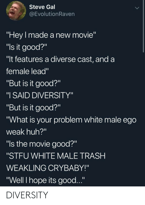 "crybaby: Steve Gal  @EvolutionRaven  ""Hey made a new movie""  ""ls it good?""  ""It features a diverse cast, and a  female lead""  ""But is it good?""  ""I SAID DIVERSITY""  ""But is it good?""  ""What is your problem white male ego  weak huh?""  ""ls the movie good?""  ""STFU WHITE MALE TRASH  WEAKLING CRYBABY!""  ""Well I hope its good..."" DIVERSITY"