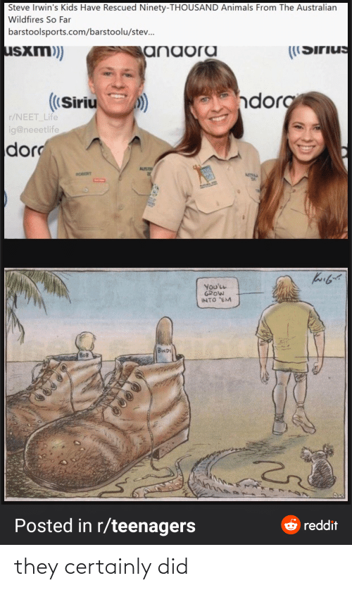robert: Steve Irwin's Kids Have Rescued Ninety-THOUSAND Animals From The Australian  Wildfires So Far  barstoolsports.com/barstoolu/stev.  usxm)  anaora  ((Sirius  ndorg  ((Siriu  r/NEET_Life  ig@neeetlife  dor  AUST  ROBERT  ATIM  You'LL  GROW  INTO 'EM  BINDI  BOB  Posted in r/teenagers  e reddit they certainly did