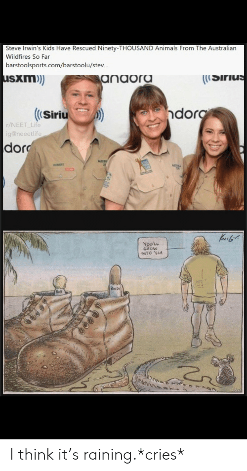 Far: Steve Irwin's Kids Have Rescued Ninety-THOUSAND Animals From The Australian  Wildfires So Far  barstoolsports.com/barstoolu/stev.  usxm)  ((Sirius  anaora  dorg  ((Siriu  r/NEET Life  ig@neeetlife  dor  AUST  RORORT  You'LL  GROW  INTO 'EM  BwD I think it's raining.*cries*