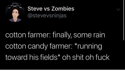 cotton: Steve vs Zombies  @stevevsninjas  cotton farmer: finally, some rain  cotton candy farmer: *running  toward his fields* oh shit oh fuck