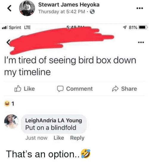 Sprint, Hood, and Box: Stewart James Heyoka  Thursday at 5:42 PM  Sprint LTE  81%-  I'm tired of seeing bird box down  my timeline  b Like  Comment  Share  LeighAndria LA Young  Put on a blindfold  Just now Like Reply That's an option..🤣
