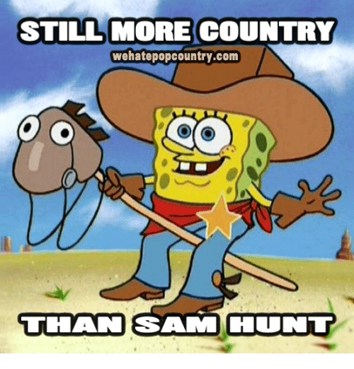 Salamence: STILL MORE COUNTRY  wehatepopcountry.com  THAN SALAM COUNT