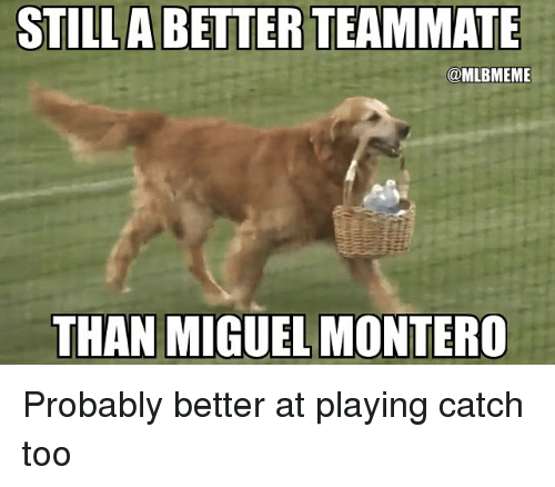 Mlb, Miguel, and Montero: STILLA BETTER TEAMMATE  @MLBMEME  THAN MIGUEL MONTERO Probably better at playing catch too
