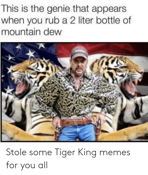 stole: Stole some Tiger King memes for you all