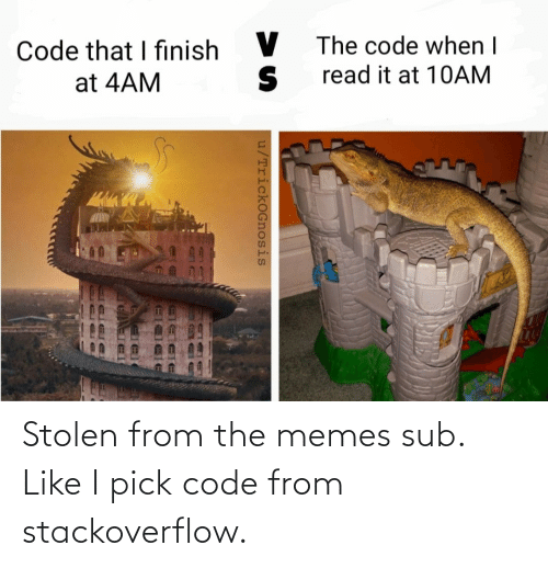 The Memes: Stolen from the memes sub. Like I pick code from stackoverflow.