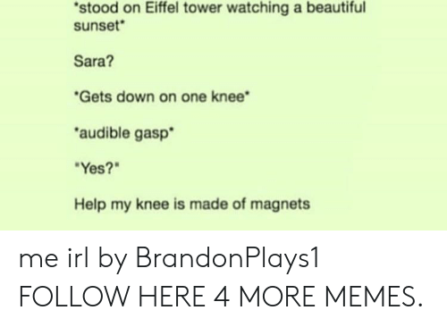 Audible: stood on Eiffel tower watching a beautiful  sunset  Sara?  Gets down on one knee  audible gasp  Yes?  Help my knee is made of magnets me irl by BrandonPlays1 FOLLOW HERE 4 MORE MEMES.