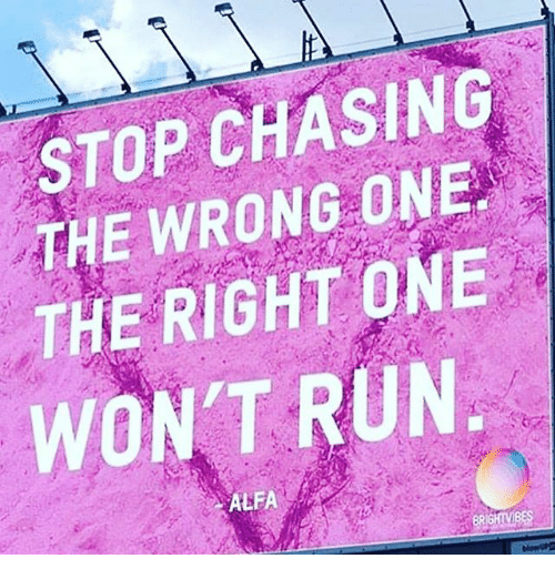 Memes, Run, and 🤖: STOP CHASING  THE WRONG ONE  THE RIGHT ONE  WON'T RUN  ALFA