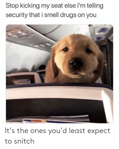Expect: Stop kicking my seat else l'm telling  security that i smell drugs on you It's the ones you'd least expect to snitch