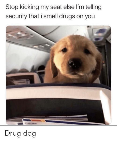 Smell: Stop kicking my seat else l'm telling  security that i smell drugs on you  W451-68/1T Drug dog