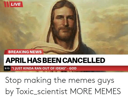 The Memes: Stop making the memes guys by Toxic_scientist MORE MEMES