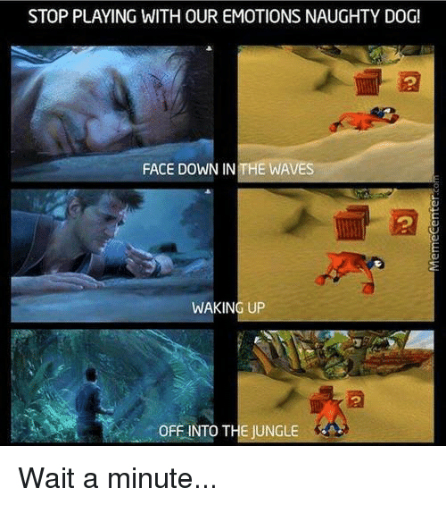 Dogs, Memes, and Ups: STOP PLAYING WITH OUR EMOTIONS NAUGHTY DOG!  FACE DOWN IN THE WAVES  WAKING UP  OFFINTO THE JUNGLE Wait a minute...