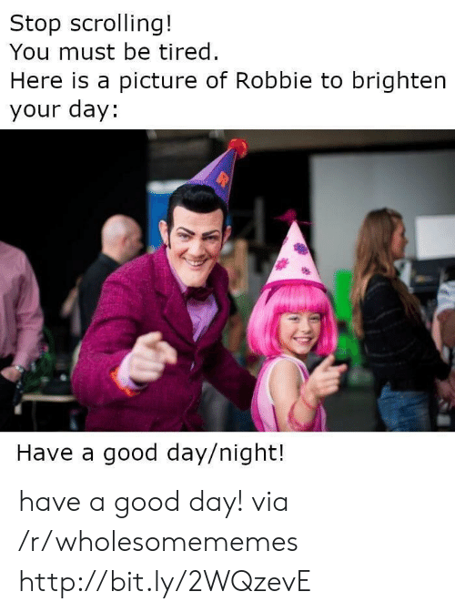 Robbie: Stop scrolling!  You must be tired.  Here is a picture of Robbie to brighten  your day:  Have a good day/night! have a good day! via /r/wholesomememes http://bit.ly/2WQzevE