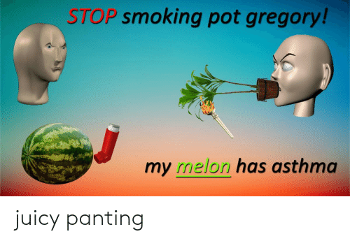 Asthma: STOP smoking pot gregory!  my melon has asthma juicy panting