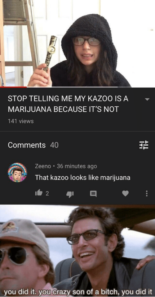 Bitch, Crazy, and Marijuana: STOP TELLING ME MY KAZOO IS A  MARIJUANA BECAUSE IT'S NOT  141 views  Comments 40  Zeeno 36 minutes ago  That kazoo looks like marijuana  2  you did it. you crazy son ofa bitch, you did it