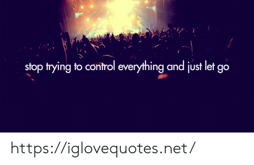 Let Go: stop trying to control everything and just let go https://iglovequotes.net/