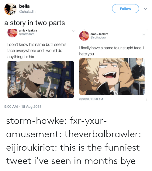funniest: storm-hawke:  fxr-yxur-amusement:  theverbalbrawler:  eijiroukiriot: this is the funniest tweet i've seen in months bye