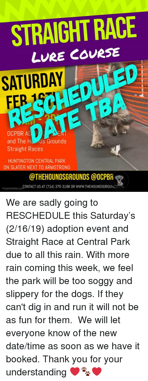 Dogs, Memes, and Run: STRAIGHT RACE  LvRE COURSE  SCHEDULED  DATE TBA  SATURDAY  OCPBR A  and The Hd ds Grounds  Straight Races  HUNTINGTON CENTRAL PARK  ON SLATER NEXT TO ARMSTRONG  @THEHOUNDSGROUNDS@OCPBR  co-CONTACT US AT (714) 375-3188 OR www.THEHOUNDSGROUhじさ'  ーml  e We are sadly going to RESCHEDULE this Saturday's (2/16/19) adoption event and Straight Race at Central Park due to all this rain. With more rain coming this week, we feel the park will be too soggy and slippery for the dogs. If they can't dig in and run it will not be as fun for them. ​ ​We will let everyone know of the new date/time as soon as we have it booked.  ​Thank you for your understanding ❤️🐾❤️