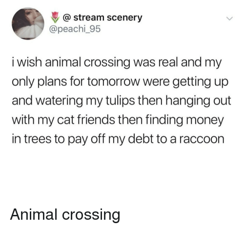 Animal Crossing: @ stream scenery  @peachi_95  i wish animal crossing was real and my  only plans for tomorrow were getting up  and watering my tulips then hanging out  with my cat friends then finding money  in trees to pay off my debt to a raccoon Animal crossing