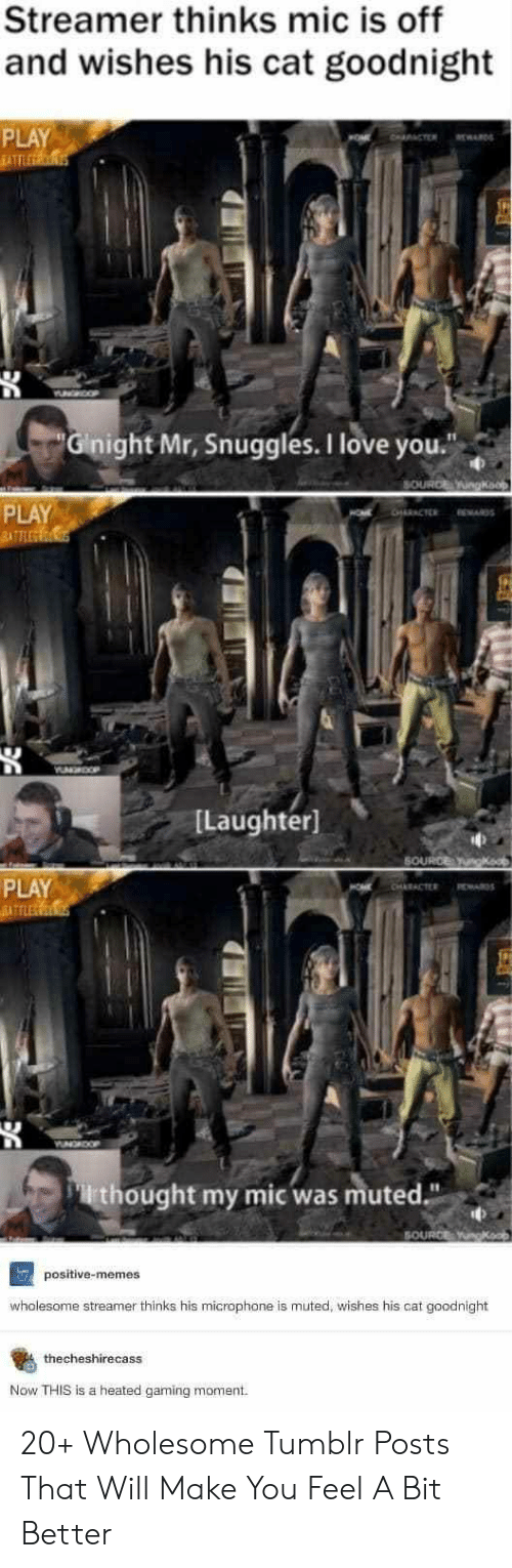 """Memes Wholesome: Streamer thinks mic is off  and wishes his cat goodnight  PLAY  SATTLEERONS  CTER ARD  NHOOP  Gnight Mr, Snuggles. I love you.""""  SOURCE gkaop  PLAY  BATTLEC  CHARACTER  WAS  ILaughter  SOURCE gka  PLAY  ATELE  CHARACTER  RWARD  YUNGAOOP  rthought my mic was muted.""""  SOURCE  positive-memes  wholesome streamer thinks his microphone is muted, wishes his cat goodnight  thecheshirecass  Now THIS is a heated gaming moment 20+ Wholesome Tumblr Posts That Will Make You Feel A Bit Better"""
